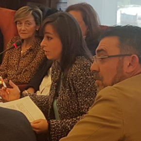 Intervención de Gemma Villarroel en el debate de aprobación del Presupuesto 2020 en el Pleno de León
