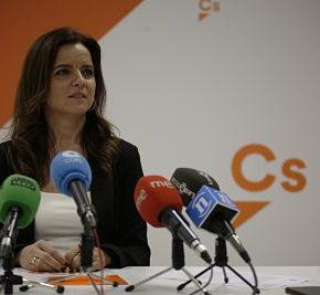 """Amigo (Cs): """"Nos preocupa este PSOE de la desigualdad: quitan peajes en Cataluña y los suben en Castilla y León"""""""