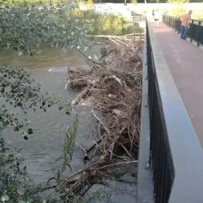 Ciudadanos vuelve a insistir en la limpieza del cauce de los ríos Bernesga y Torío